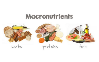 Understanding Your Macronutrients
